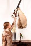 Девушка в винтажном платье с заполненными сернобыком и птицей Стоковые Фотографии RF
