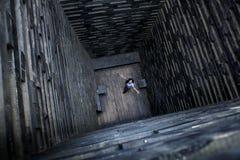 Девушка в деревянном колодце Одиночество и отчаяние Странная конструкция archetekturnoe стоковая фотография rf