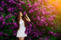 Девушка в дне белой весны платья солнечном Стоковые Изображения RF