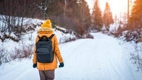 Девушка в лесе зимы на заходе солнца Стоковая Фотография