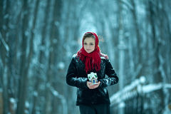 Девушка в лесе зимы Стоковые Фото