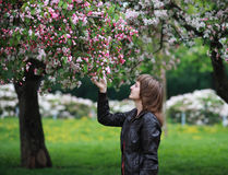 Девушка в зацветая парке стоковое изображение rf
