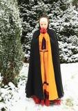 Девушка в историческом платье стоковые изображения
