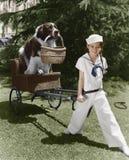 Девушка в костюме матроса вытягивая собаку в корзине (все показанные люди более длинные живущие и никакое имущество не существует стоковое фото rf