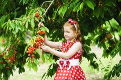 Девушка в красивом платье в саде стоковая фотография rf