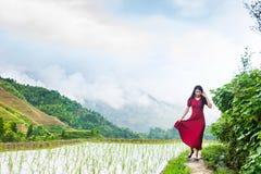 Девушка в красном платье идя террасой риса стоковые фотографии rf