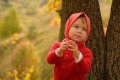 Девушка в красном цвете Стоковое Фото