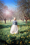 Девушка в куртке джинсовой ткани наслаждается цветками рано утром Стоковое фото RF