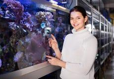 Девушка в магазине аквариума при интерес смотря красочных рыб Стоковые Фото