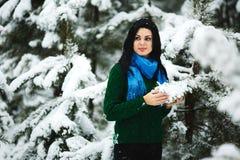 Девушка в портрете леса зимы девушки Девушка в зиме идет в древесины снег льет от ветви Стоковая Фотография RF