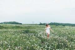 Девушка в поле стоцветов Стоковые Изображения RF