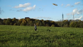 Девушка в поле с змеем видеоматериал