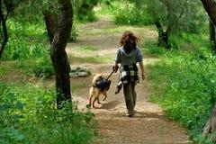 Девушка в прогулках леса с ее любимой собакой стоковые фотографии rf