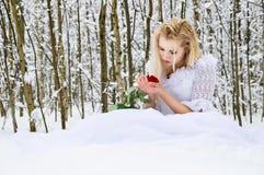 Девушка в платье венчания в зиме стоковые изображения rf
