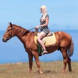 Девушка в платье полька-точки едет на коричневый gelding стоковое изображение rf