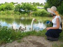 Девушка в ретро платье и шляпа идя вокруг озера и подают лебеди Стоковые Изображения RF