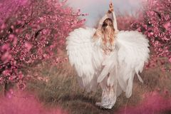 Девушка в розовом платье в зацветая садах стоковые фотографии rf