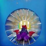 Девушка в трубке стоковая фотография rf