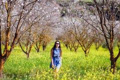 Девушка в луге долины и цветка дерева цветений Стоковое Фото