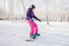 Девушка в фиолетовой куртке и розовые брюки учат езду сноуборд Стоковые Фотографии RF