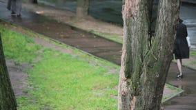 Девушка в черный идти без зонтика под падать дождя сток-видео