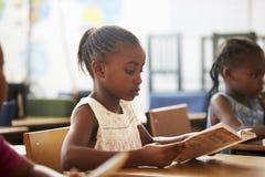 Девушка держа книгу и читая в уроке начальной школы Стоковое Изображение RF