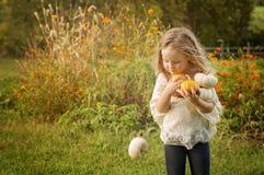 Девушка держа тыквы Стоковое Изображение