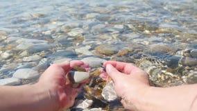 Девушка держит камешки моря в ее руках Женский крупный план рук Прибой моря, каменная текстура Туризм и перемещение сток-видео