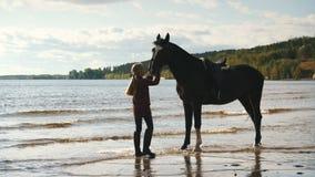 Девушка для того чтобы позаботиться о лошади на пляже акции видеоматериалы