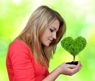 Девушка держа в дереве рук в сердце формы стоковое фото rf