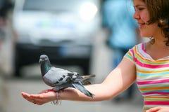 Девушка держа голубя Стоковая Фотография