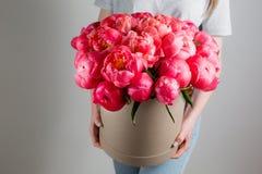 Девушка держа красивый коралл смешивания и розовый букет цветка в круглой коробке с крышкой коралл Sharm ранга пионов Стоковое фото RF