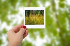 Девушка держа немедленное фото ландшафта природы, фокуса на ha Стоковая Фотография RF