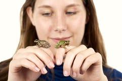 Девушка держа 2 древесной лягушки Орегона Стоковые Фотографии RF
