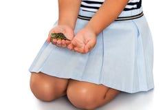 Девушка держа черепаху Стоковое Изображение RF