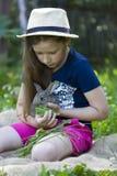 Девушка держит маленького кролика Стоковые Изображения RF