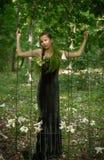 Девушка леса Стоковые Изображения