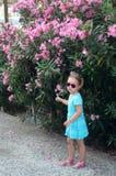 Девушка лета Стоковое Изображение