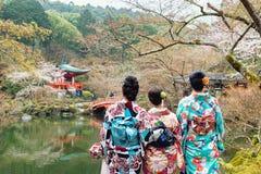 Девушка детенышей 3 нося кимоно Японии стоя перед Daigo стоковые изображения rf
