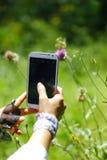 Девушка делает фотографию бабочки на flowerr в лесе Стоковые Изображения