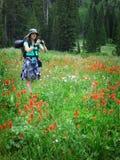 Девушка женщины укладывая рюкзак при Wildflowers принимая фотоснимок Стоковая Фотография RF