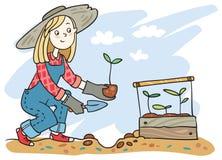 Девушка засаживая ростки Стоковая Фотография