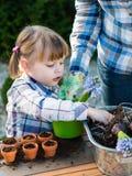 Девушка засаживая шарики цветка Стоковые Фотографии RF