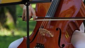 Девушка играя виолончель сток-видео