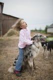 Девушка играя с Коллиой границы Стоковое фото RF