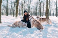 Девушка играя с собаками в снеге Стоковые Изображения RF