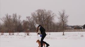 Девушка играя с собакой в парке зимы на утре рождества собака и девушка, который побежали в снеге сток-видео