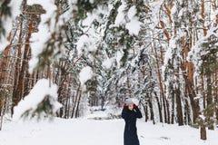 Девушка идет в покрытый снег лес среди сосен в красном g стоковое фото