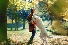 девушка идет на парк осени с молодой белой швейцарской собакой чабана стоковая фотография