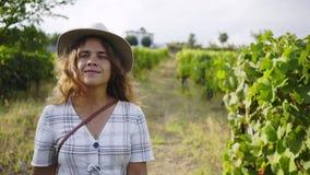Девушка идя между строкой виноградника сток-видео